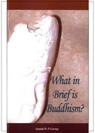 What in Brief Is Buddhism? 佛法大意